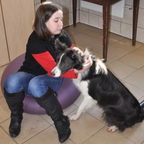 Pes klienta