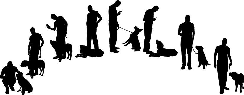 types-of-dog-training